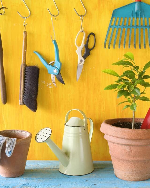 Garden Accesories header